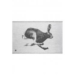 Kökshandduk Hare