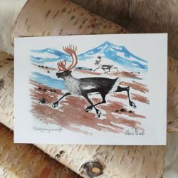 Konstkort Två renar Pirak