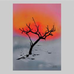 Artprint Birch Art Miriam
