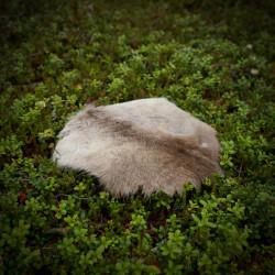 Seat Pad Reindeerfur