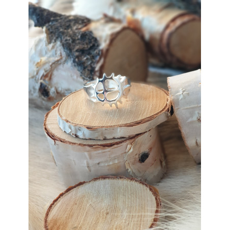 Ring Sol Silver
